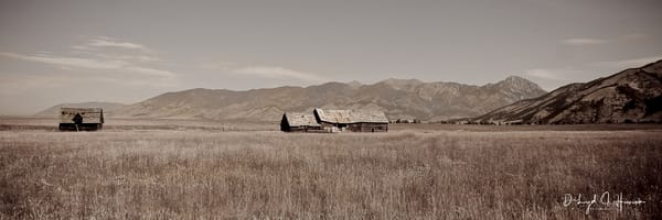"""Homestead"", PhotoDiscoveries"