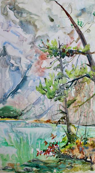 Teardrop Lake And The Crooked Tree Art | Karen Bishop Artist