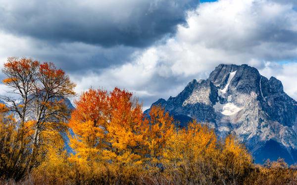 Fall Portrait of Mt. Moran