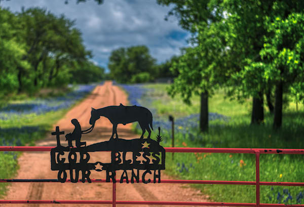 Bluebonnet Road   Photography Art | Photos by Angie B