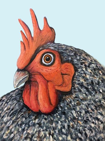 MPhillip-Rock-Rooster