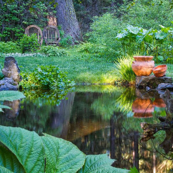 Charlie's Garden Pond