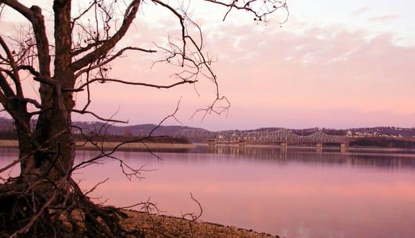 CAdams-Pink-Skies-TRL