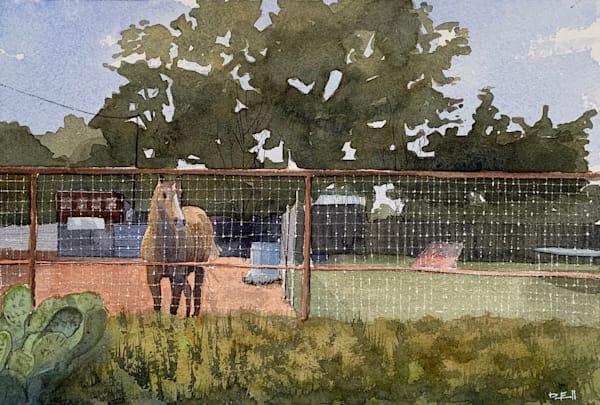 horse, alpine, texas, tx, watercolor, horses, art