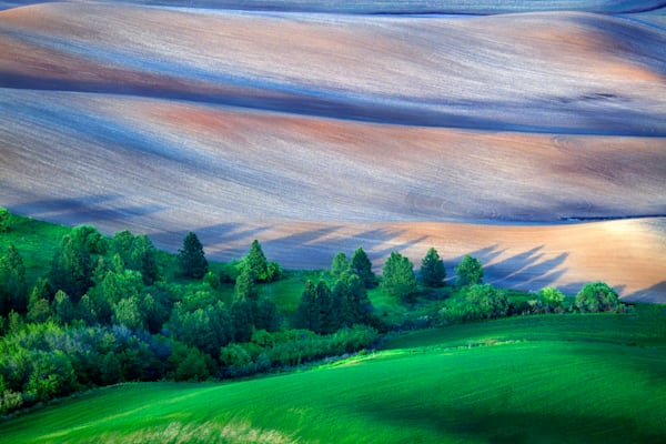 Palouse Shadows | Shop Photography by Rick Berk
