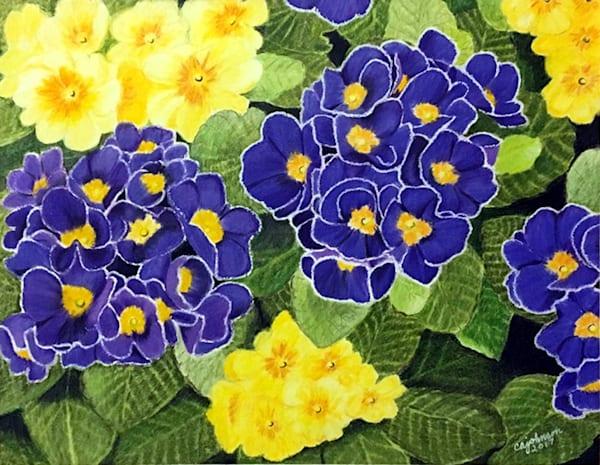 Pretty Primrose, Original Colored Pencil Painting