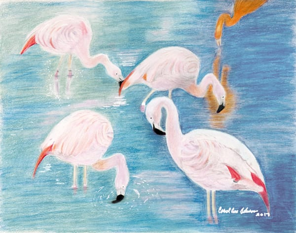 Sissy's Flamingos, Original Colored Pencil Painting