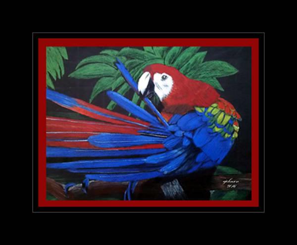 Blue Parrot, Original Colored Pencil Painting
