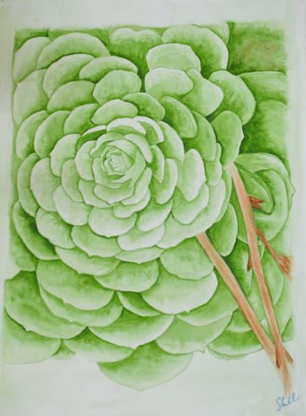 Serene Succulent Art | InspiringLee