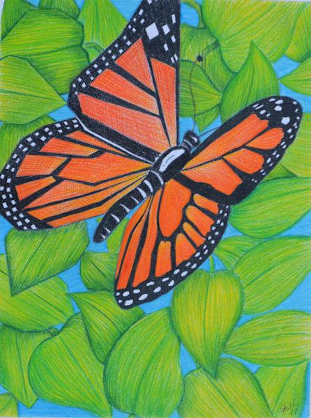 Geometric/Organic Butterfly Art | InspiringLee