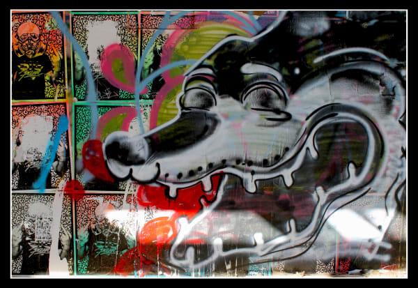 'Salty Salton Sea Dog' for Sale as Fine Art