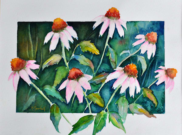 Cone Flowers, From an Original Watercolor Painting