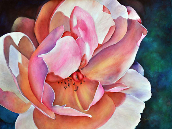 Pink Rose, From an Original Watercolor Painting
