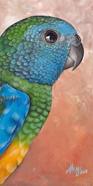 Little Scarlet Breasted Parakeet
