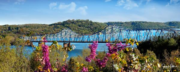 JStoner - Spring - Kimberling City Bridge - Flowers