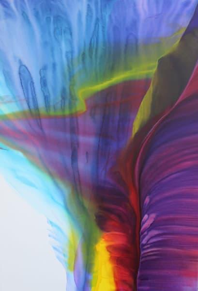 Canyon Mist Art | Doreen Wulbrecht