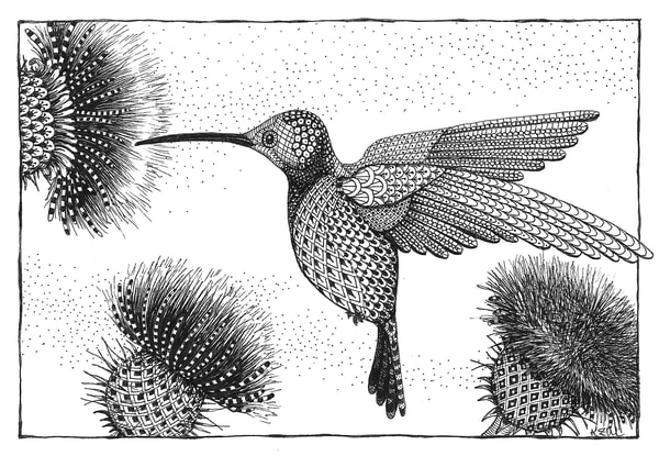 "Hummingbird & Thistle by Kristin Moger ""Seriously Fun Art"""