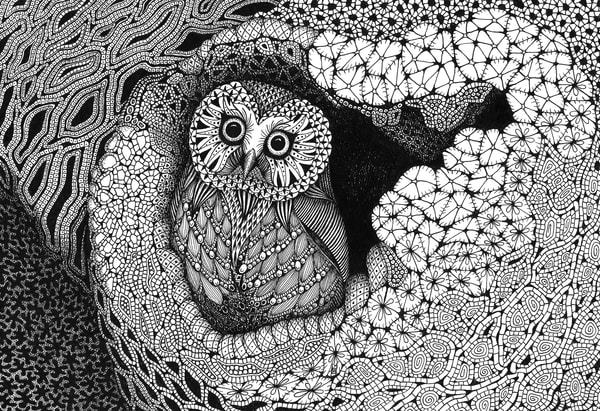"Owl In A Hollow   Kristin Moger ""Seriously Fun Art"""