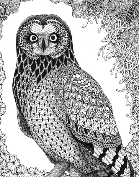 "Short Ear Owl by Kristin Moger ""Seriously Fun Art"""