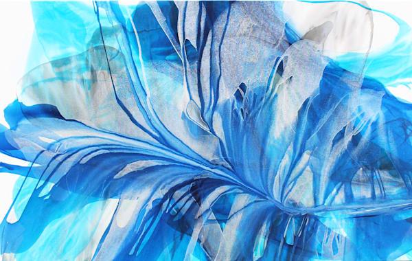 Silver Blue Mist / Chuck