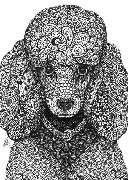 "Poodle | Kristin Moger ""Seriously Fun Art"""