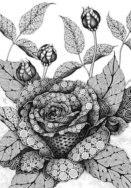 "Rose | Kristin Moger ""Seriously Fun Art"""