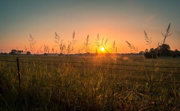 NRyder-CountrySunrise-Fence