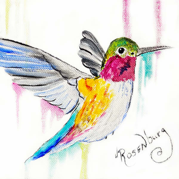JRosenburg - Hummingbird - Ruby Throat