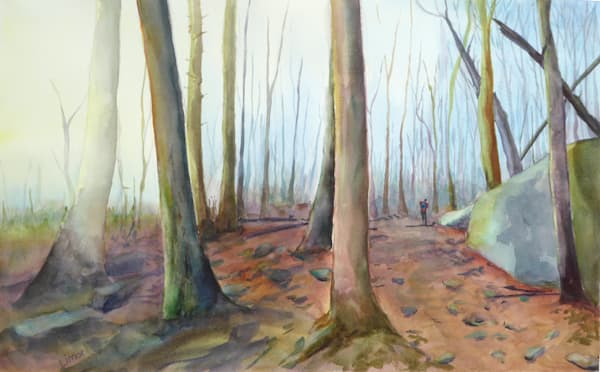 A Walk In The Misty Forest Art | Limor Dekel Fine Art
