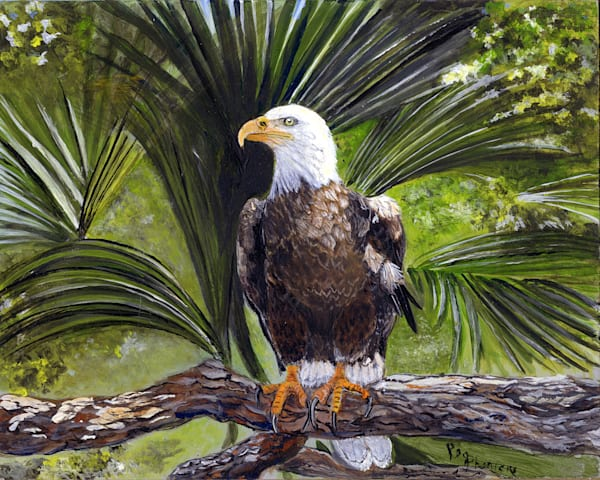 American Bald Eagle, From an Original Oil Painting