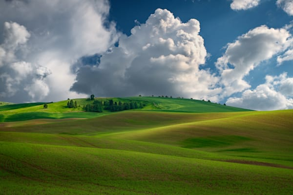 Afternoon Bliss in the Palouse | Shop Photography by Rick Berk