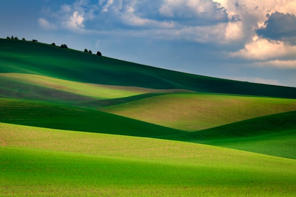 The Palouse in Light & Shadow | Shop Photography by Rick Berk