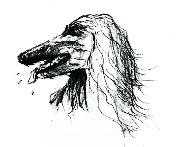 Draw Prints
