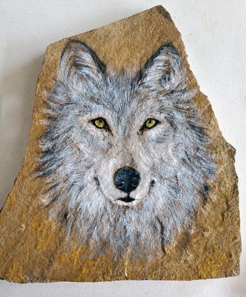 MSchmitt-territorial-wolf