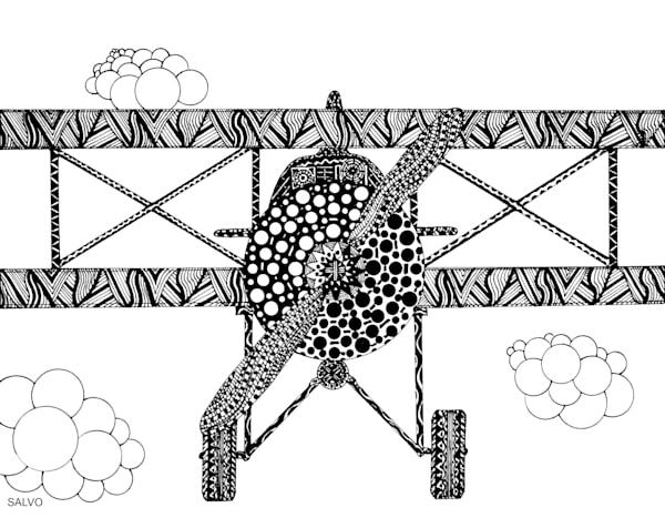 JSalvo-bi-plane-ink