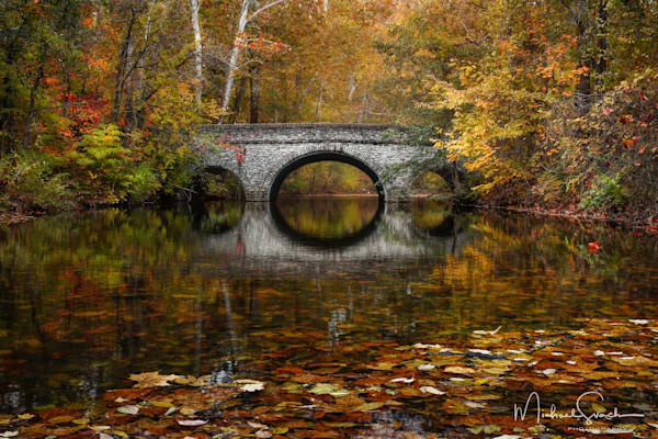 Reflections Of Fall Photography Art | Studio 221 Photography