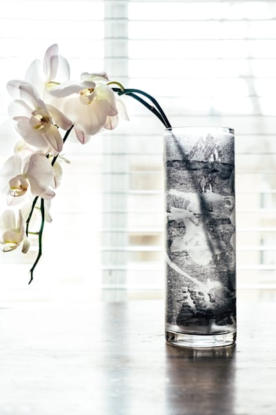 "Orchid Matrix Static 12"" Photography Art   Meredith Ochoa"