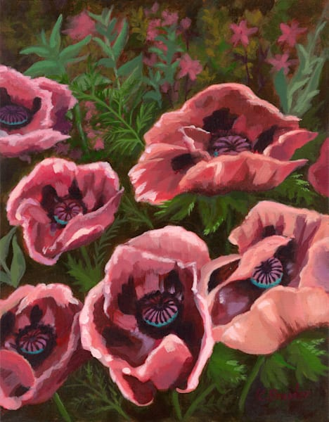 Kim Bruder - Poppies