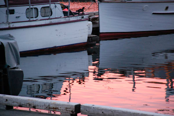 Morning Reflection Art | Friday Harbor Atelier
