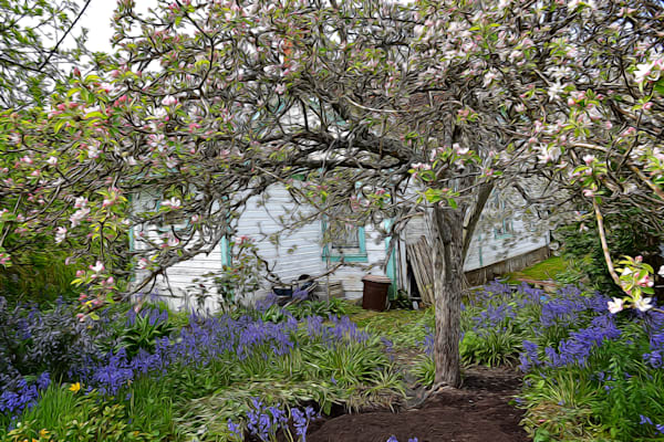 Secret Garden Art | Friday Harbor Atelier