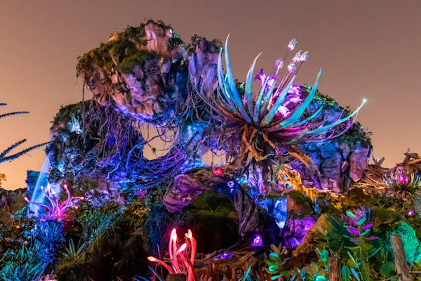 Pandora at Night - Avatar Land Photos