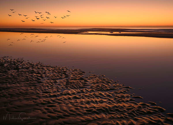 Orange Sunrise Photography Art | Studio 221 Photography