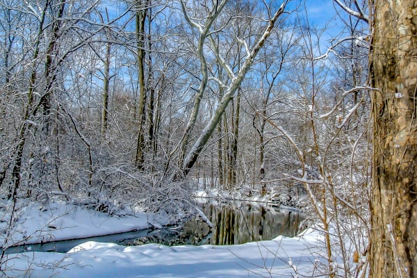 Michigan Winter Photography Art | jimhooverphoto