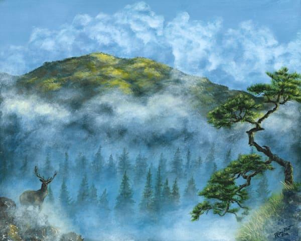 Misty hills 16x20 mnyn3y