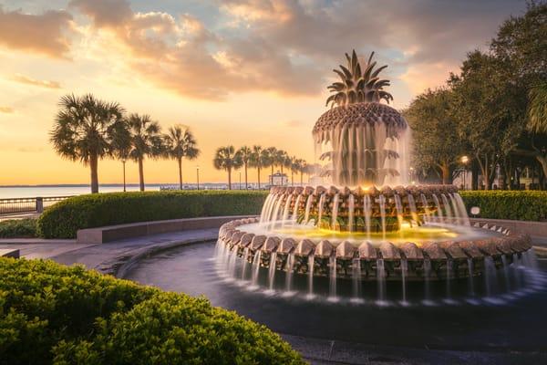 Pineapple Fountain Photography Art | Studio 221 Photography