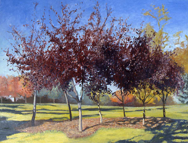 Seven Trees by Mark Granlund