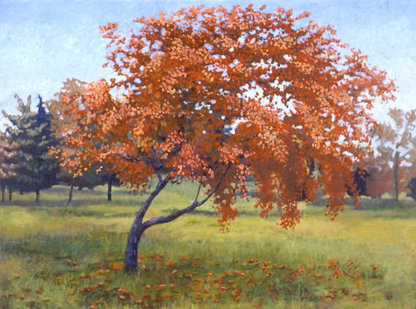 Red Tree 2 Art | Mark Granlund Studio