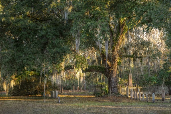 Southern Cemetary Photography Art | Studio 221 Photography