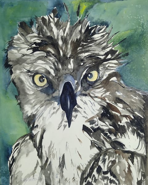 Are You Looking at Me, From an Original Watercolor Painting