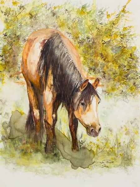 Spring Pastures  Art by debrabrunerstudio